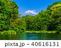 柿田川 富士山 新緑の写真 40616131