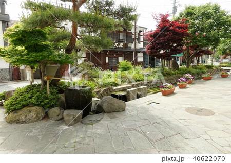 松本市 辰巳の御庭  40622070