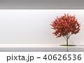 ミニマル 格好 庭のイラスト 40626536