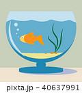 アクアリウム 水族園 水族館のイラスト 40637991