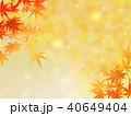 紅葉 秋 葉のイラスト 40649404