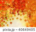 紅葉 秋 葉のイラスト 40649405