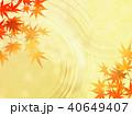 紅葉 秋 葉のイラスト 40649407