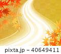 紅葉 川 秋のイラスト 40649411