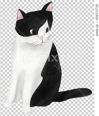 手繪 貓 貓咪 40653736