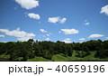 東京 千代田区 皇居の新緑 2018年5月 40659196