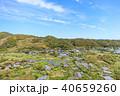 館山市 風景 空撮の写真 40659260