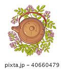 フラワー 花 ハーブのイラスト 40660479