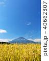 富士山 晴れ 秋の写真 40662307
