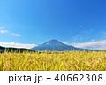 富士山 晴れ 秋の写真 40662308