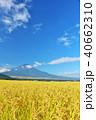 富士山 晴れ 秋の写真 40662310