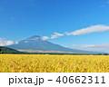 富士山 晴れ 秋の写真 40662311