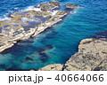 弁慶岬 海 日本海の写真 40664066