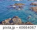弁慶岬 海 日本海の写真 40664067