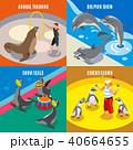 野生動物 野生生物 水族館のイラスト 40664655