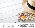 貝殻 40667133