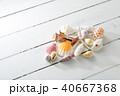 貝殻 40667368