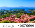 長串山つつじまつり 長串山公園 つつじの写真 40676699
