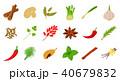 スパイス 香辛料 セットのイラスト 40679832