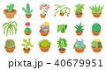 さぼてん サボテン 仙人掌のイラスト 40679951