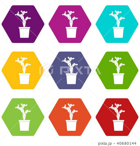 Opuntia icon set color hexahedron 40680144