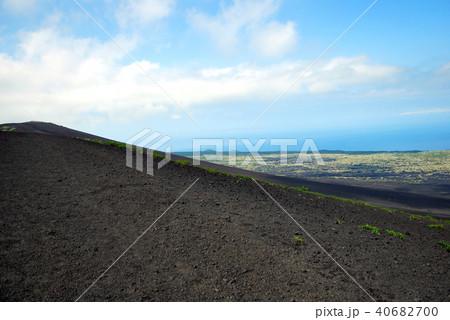 伊豆大島、三原山、月と砂漠ライン 40682700
