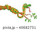 小枝 ヘビ 蛇のイラスト 40682731