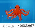 赤色 タコ たこのイラスト 40683967