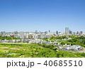ビル群 新緑 春の写真 40685510
