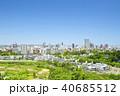 ビル群 新緑 春の写真 40685512