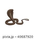 コブラ ヘビ 蛇のイラスト 40687920