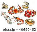 海鮮 40690462