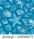 貝 貝がら 貝殻のイラスト 40690673