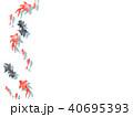 金魚 夏 魚のイラスト 40695393