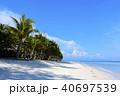 フィリピンPanglaoのビーチ 40697539