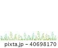 植物 40698170
