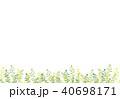 植物 40698171