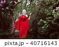 Portrait of a beautiful elf woman in a red dress. 40716143