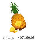 パイン パイナップル スナックパインのイラスト 40716986