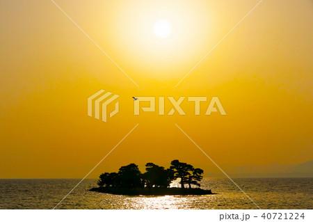 夕焼けの宍道湖と水鳥の写真(島根県松江市) 40721224