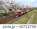 桜並木とEH500のコンテナ貨物 40723798