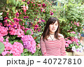 紫陽花 アジサイ あじさいの写真 40727810