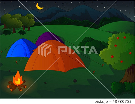 camping in the meadow at nightのイラスト素材 40730752 pixta