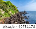 伊根町 風景 日本海の写真 40731178