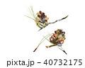 松葉 松ぼっくり ちぎり絵のイラスト 40732175
