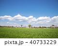 桜 公園 桜並木の写真 40733229