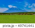 富士山 茶畑 富士市の写真 40741441