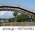 潮来アヤメ園の太鼓橋 40743481