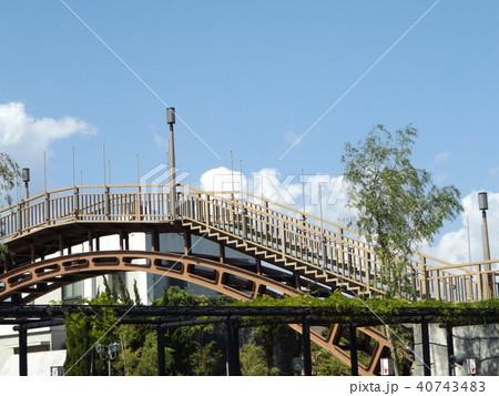 潮来アヤメ園の太鼓橋 40743483