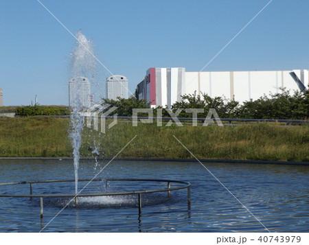 習志野市サクラ広場のカルガモ池の噴水 40743979